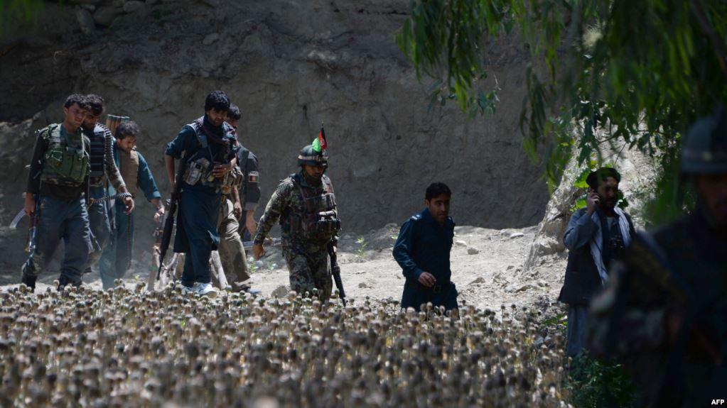 دفاع وزارت: د تورې بوړې سیمه په بشپړ ډول له داعشه پاکه شوه