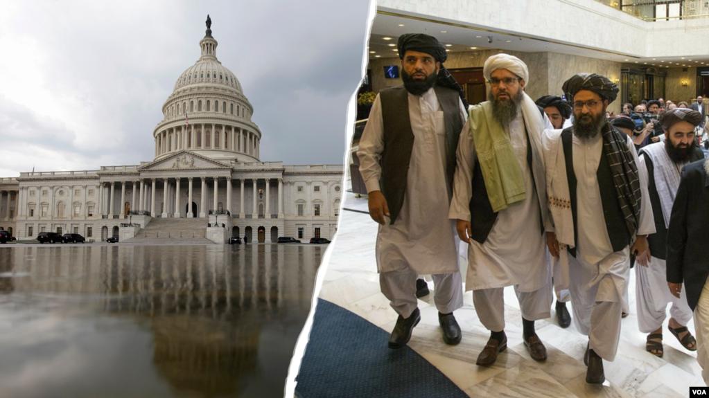 د طالبانو ترهگره ډله باید په امریکا کې پل کښینږدي – د کانگرس غړي