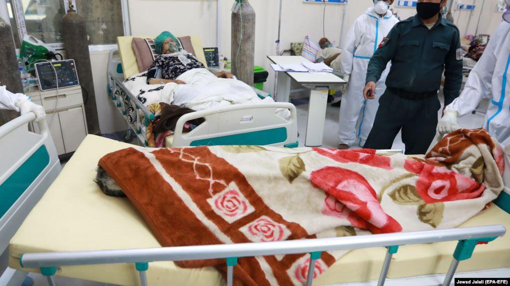 افغان چارواکي: کرونا ویروس تېرو څلورويشتو ساعتونو کې ۱۲ کسان مړه کړي